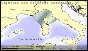 Ligurian Sea Cetacean Sanctuary - Map of the sanctuary
