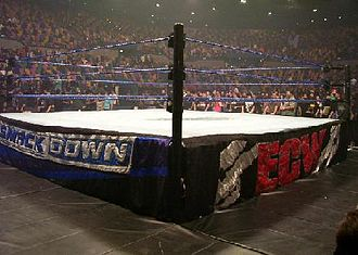 Wrestling ring - A WWE ring