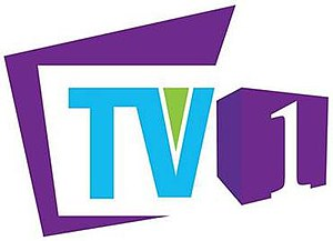 TV One (Sri Lanka) - Image: TV One logo