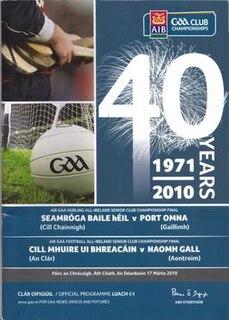 2009–10 All-Ireland Senior Club Hurling Championship