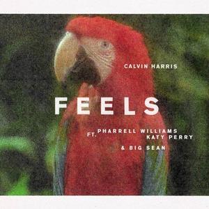 Feels (song) - Image: Calvin Harris Feels cover art