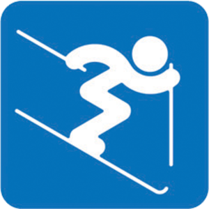 Freestyle skiing at the 2014 Winter Olympics - Image: Freestyle Skiing (Moguls), Sochi 2014