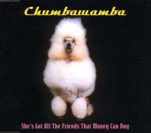 She's Got All the Friends That Money Can Buy - Image: Chumbawamba shes got all