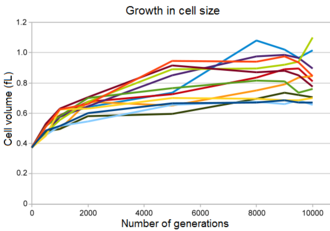 E. coli long-term evolution experiment - Growth in cell size of bacteria in the Lenski experiment