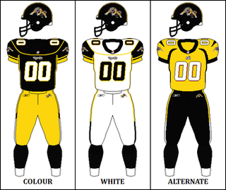 2008 Hamilton Tiger-Cats season Season of Canadian Football League team the Hamilton Tiger-Cats