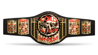 ECW World Tag Team Championship - The ECW World Tag Team Championship belt (last redesign)