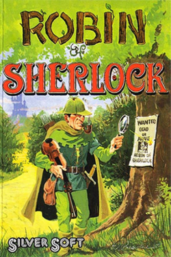 Robin of Sherlock Coverart.png