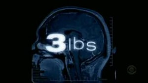 3 lbs - Intertitle