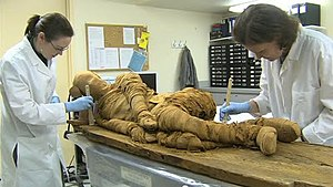 Old Kingdom Mummy