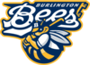 Burlingtonbees2006.PNG