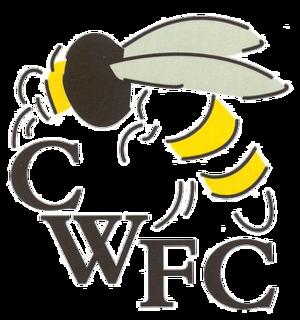 Chalfont Wasps F.C. - Image: Chalfont Wasps F.C. logo