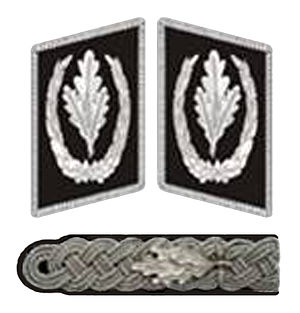 Reichsführer-SS - Collar and shoulder insignia in 1934