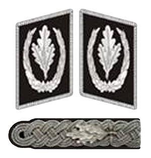 Reichsführer-SS - Collar and shoulder insignia in 1934
