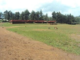 Shambu - Image: Shambu stadium