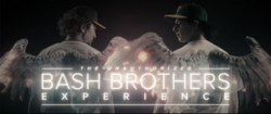 The Unauthorized Bash Brothers Experience.png