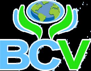 B.C. Vision - Image: BC Vision logo