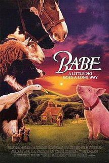 <i>Babe</i> (film) 1995 film by Chris Noonan