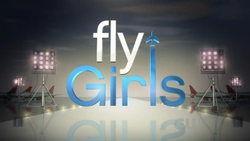 Fly Girls (TV series).png