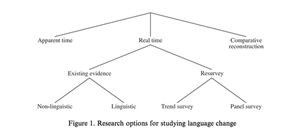 Real-time sociolinguistics - Diagram showing different research options in sociolinguistics, including real-time (Tillery and Bailey 2003). Real-time studies encompass several subcategories.