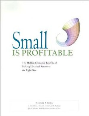Small Is Profitable - Image: Small is Profitable