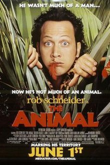 Rob Schneider's head appearing from behind long grass. A red feather is sticking out from between his lips.