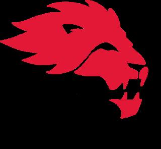 York Lions football University Canadian football team