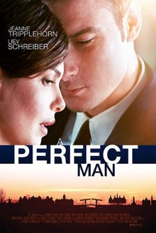 A Perfect Man 2013 poster.jpg