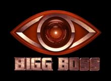 Bigg Boss Telugu 1 - Wikipedia