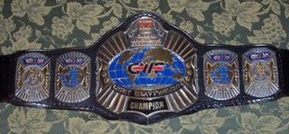 GWF Light Heavyweight Championship Professional wrestling championship