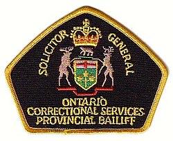 definition of bailiff