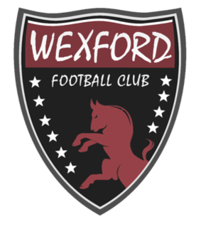 Wexford F.C. - Image: Wexford Youths FC