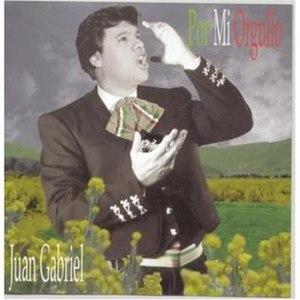 Por Mi Orgullo - Image: Album Cover Juan Gabriel Por Mi Orgullo