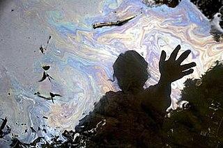 <i>Crude</i> (2009 film) 2009 film by Joe Berlinger