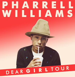 Dear Girl Tour - Promotional poster for the tour