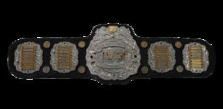 IWGP Junior Heavyweight Championship Professional wrestling championship