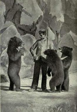 Performingblackbears