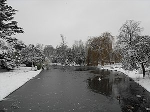 Ravenscourt Park - Ravenscourt Park in winter