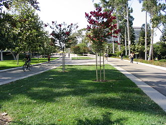 Campus of the University of California, Irvine - Ring Road encircles the campus as a main artery for students and other pedestrians.