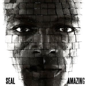 Amazing (Seal song) - Image: Seal Amazing Single Cover