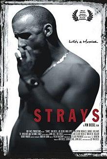 Strays (1997 film) - Wikipedia