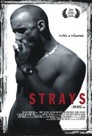 Strays (1997 film) - Film poster