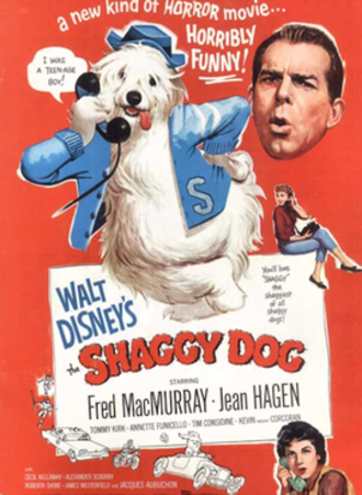 The Shaggy Dog (1959 film) - Theatrical Poster