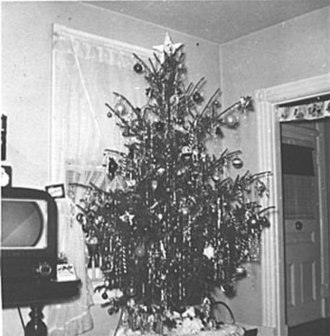 Christmas in the post-war United States - An unsheared Christmas tree in New York State circa 1951 displays the natural form of the tree's branches.