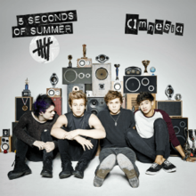 5 Seconds Of Summer Amnesia Png