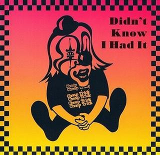 Didnt Know I Had It 1994 single by Cheap Trick