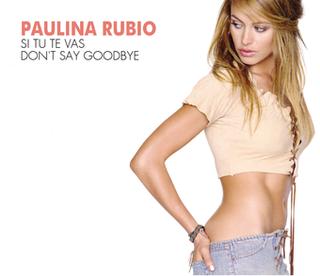 Dont Say Goodbye (Paulina Rubio song) 2002 single by Paulina Rubio