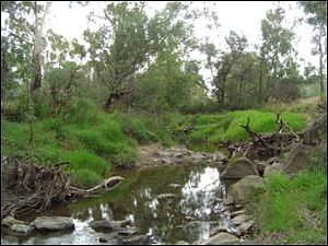 Doncaster East, Victoria - The Mullum Mullum Creek in Doncaster East