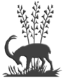 Natural History Museum of Crete (logo).png