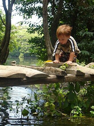 Ometepe - Image: Nicaragua 836