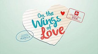 <i>On the Wings of Love</i> (TV series)